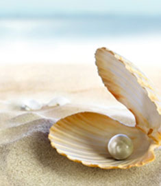 Learn About Pearls