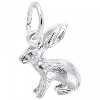 https://www.fosterleejewelers.com/upload/product/0577-Silver-Bunny-RC.jpg
