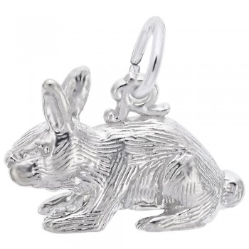 https://www.fosterleejewelers.com/upload/product/2264-Silver-Rabbit-RC.jpg