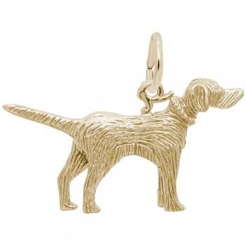 https://www.fosterleejewelers.com/upload/product/8102-Gold-Setter-RC.jpg